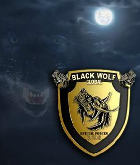 Black Wolf Security